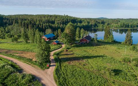 Iloluontonen Pielavesi Vaaraslahti Pohjois-Savo